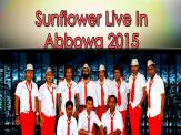 Sunflower Live In Abbowa 2015